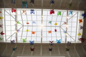 butterflies-hanging-up